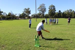Croquet Ball Game